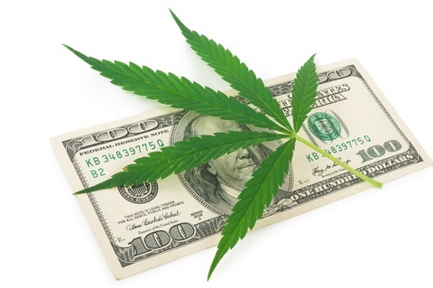 Cannabiz the pros cons of starting a marijuana business in the US